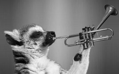 10 lucruri despre cursurile de canto de la Companie, pe care majoritatea le cred ciudate